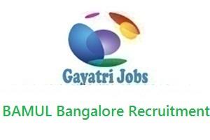 BAMUL Bangalore Recruitment