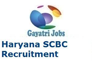 Haryana SCBC Recruitment