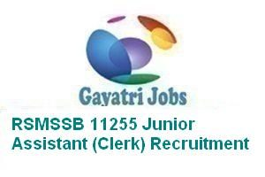 RSMSSB 11255 Junior Assistant (Clerk) Recruitment