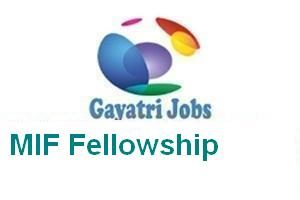 MIF Fellowship