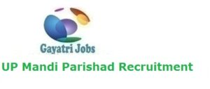 UP Mandi Parishad Recruitment