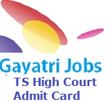 TS High Court Admit Card